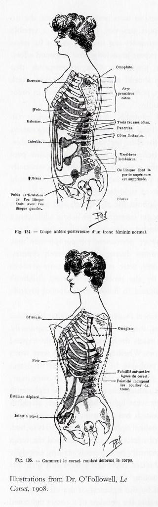 corset_spine